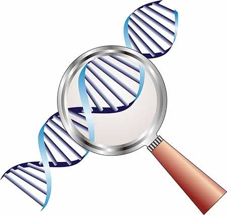 pgd-diagnostico-de-pre-implantacao-reproducao-assistida