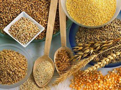 Ingestão materna de grãos integrais e resultados em FIV