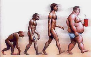 Obesidade e Fertilidade Masculina